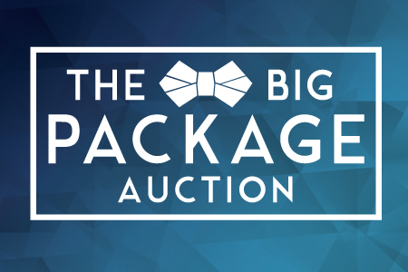 Big Package Auction 2016