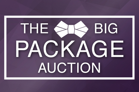Big Package Auction 2017